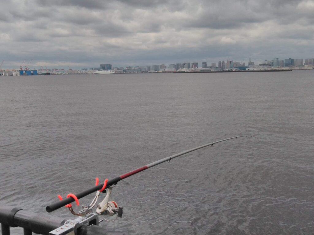 堤防釣りの様子