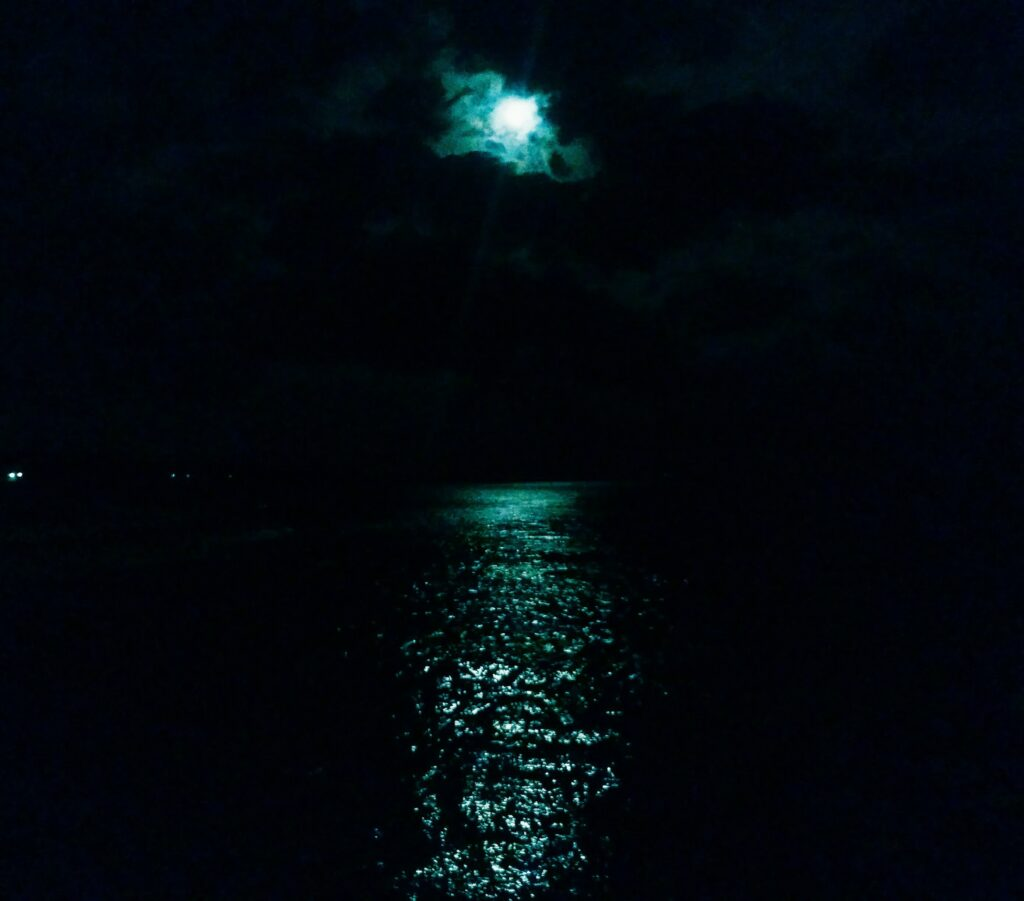 夜の堤防は、ちょっとこわい・・